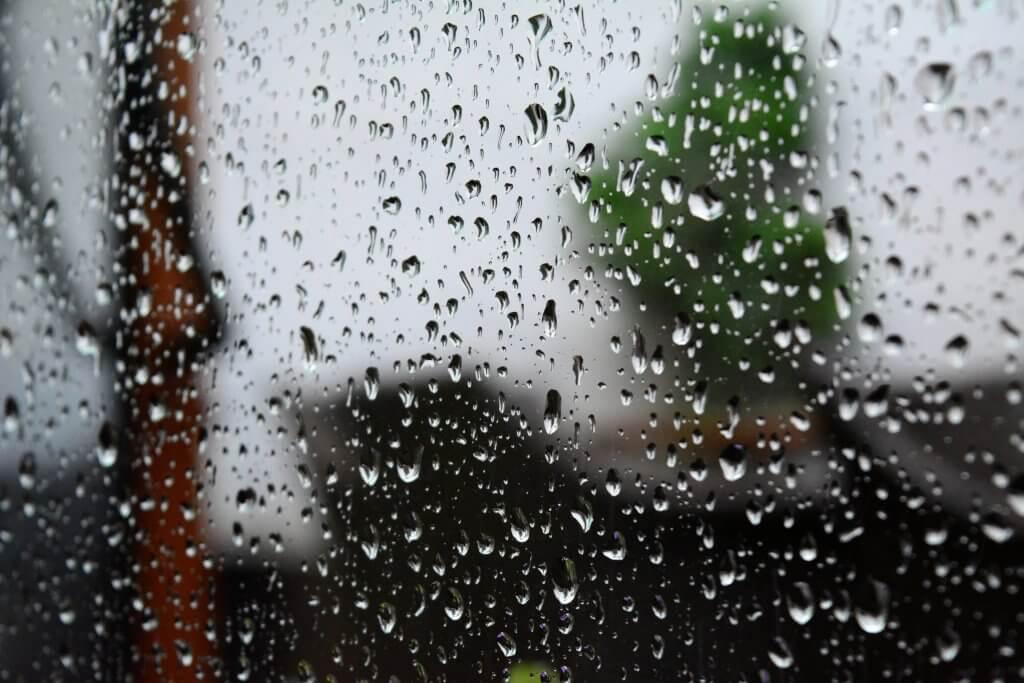 Auto Accidents - Rain - Moore Chiropractic - Olympia, WA